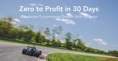 Zero to Profit in 30 Days: Accelerate Your Growth with Amazon