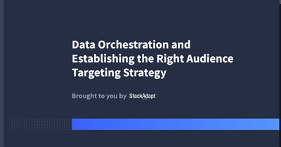 Data Orchestration and Establishing the Right Audience Targeting Strategy